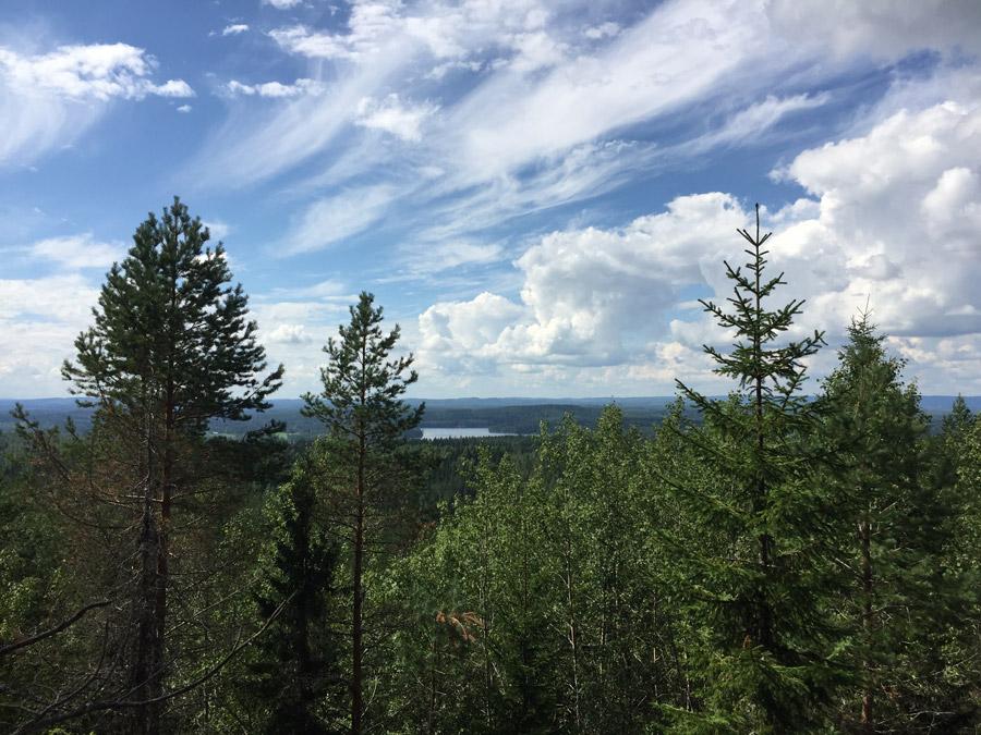 Maisemaretki Pisan vuorelle