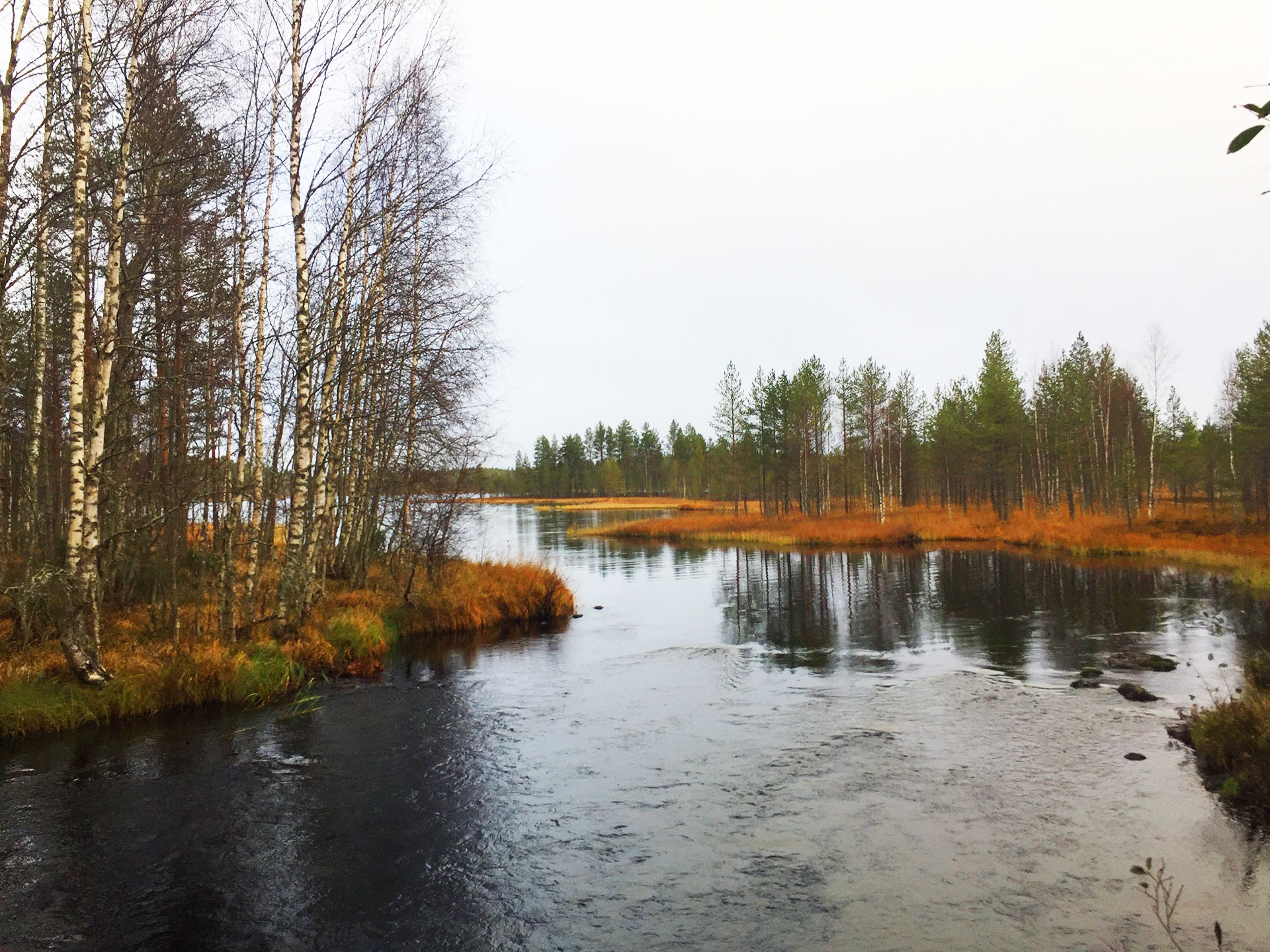 Tiilikkajärvi National Park - kayaking landscapes